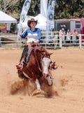 Uczestnicy w equestrian rywalizacjach wykonują na konia gospodarstwie rolnym Fotografia Royalty Free