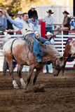 uczestnika rodeo willits Fotografia Royalty Free