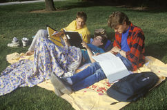 Ucznie studiuje na gazonie, Sunnyvale, CA Zdjęcia Stock