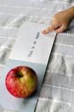 Uczyć się czytać angielszczyzny Fotografia Stock