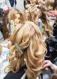 Uczyć się fryzury na głowach mannequins zdjęcie royalty free