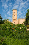Udayas kasbah的安达卢西亚的庭院 拉巴特 摩洛哥 库存照片