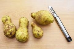 Udda formade potatisar med potatisskalaren royaltyfria bilder
