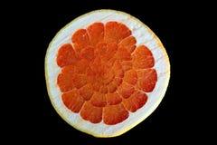 Udda frukt Arkivfoton