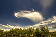 Udda molnbildande i ljuset av morgonen arkivfoto