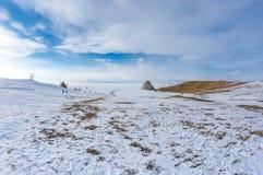 UddeBurkhan medicinman Rock på den Olkhon ön på Baikal sjön arkivfoton