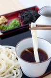 Udon Royalty Free Stock Photos
