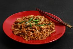 Udon de nouille, filet de poulet, légumes, huître et sauces de soja chinois, arachides d'un plat rouge image stock