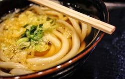 Udon japon?s foto de archivo libre de regalías
