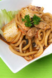 Udon noodle Royalty Free Stock Images
