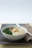 Udon Noodles Royalty Free Stock Photo