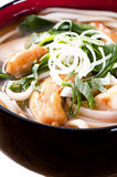 Udon Noodles stock image