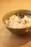 Udon noodles with pork Stock Images