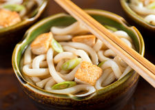 Udon Noodles with Tofu and Green Onion Stock Photography
