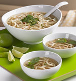 Udon Soup Royalty Free Stock Photos