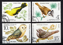 UDSSR - CIRCA 1979: eine Reihe Stempel gedruckt in UDSSR, Showvögel, CIRCA 1979 Stockbild