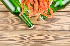 Udział gotowani czerwoni crayfishes i zielony świeży koper w białym ceramicznym pucharze obok dwa pełnych butelek piwo obrazy royalty free
