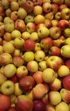 Udział jabłka zdjęcie stock