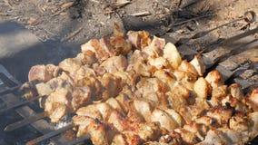 Udział kawałki mięso na skewers piec na ognisku Piec na grillu mięso lub piec w naturze Pinkin zbiory