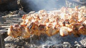 Udział kawałki mięso na skewers piec na ognisku Piec na grillu mięso lub piec w naturze Sadło przepływy zdjęcie wideo
