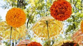 Udział parasole i piłki jaskrawy pomarańczowi i żółci wiesza i rusza się w wiatrze w jesień parku zdjęcia royalty free