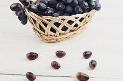 Udział rozrzuceni winogrona obok pełnego łozinowego kosza świezi dojrzali błękitni winogrona na starym drewnianym bielu zaszaluje obraz royalty free