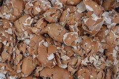 Udziały odłupany eggshell, tło, tekstura zdjęcie stock