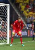 UEFA-EURO 2016: Zweden v België Royalty-vrije Stock Foto's