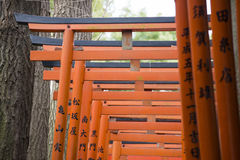 UENO, JAPAN - FEBRUARY 18, 2016 : red torii gates in Ueno park, Stock Photography