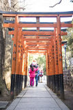 UENO, JAPAN - FEBRUARY 19, 2016 : Torii doors tunnel gate to Goj Royalty Free Stock Image