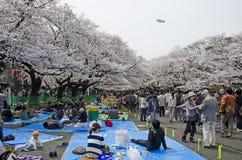 Ueno-Park lizenzfreie stockfotografie