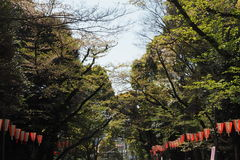 Ueno Park Royalty Free Stock Photography