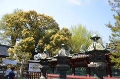 Ueno park Tokio Japonia Obraz Stock