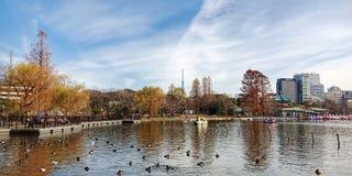 Ueno park stock image