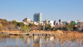 Ueno parkerar, Tokyo, Japan Royaltyfria Bilder