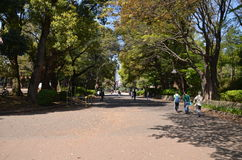 Ueno parkerar Tokyo Japan fotografering för bildbyråer