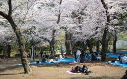 Uenopark, Tokyo, Japan Stock Afbeeldingen