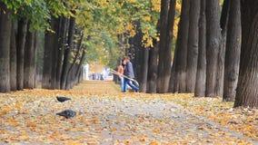 Ufa Rosja, Październik, - 11, 2017: Kolorowa złota aleja w jesień parku, liście spada ludzie chodzi na rozmytym zbiory wideo
