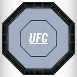 UFC Ring. An aerial view illustration of a caged fighting ring Royalty Free Stock Photos