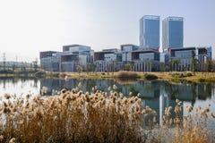 Ufer deckt mit modernen Gebäuden im Abstand auf sonnigem winte mit Schilf