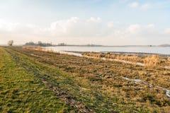 Ufer eines breiten Nebenflusses in einem Naturreservat während der Wintermeere Lizenzfreie Stockfotos