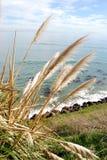 Ufer und Wellen Lizenzfreies Stockbild