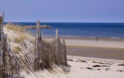 Ufer von Cape Cod stockbild