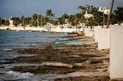 Ufer von Cozumel, Mexiko Lizenzfreie Stockfotos
