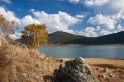 Ufer von einem Gebirgssee Stockbild