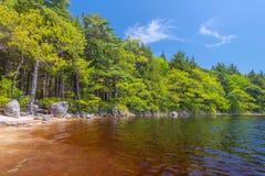 Ufer von See Lizenzfreie Stockfotos