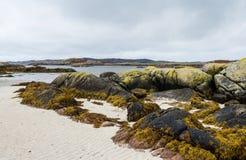 Ufer am Westpunkt der Insel von Mull, Schottland stockfotografie