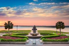 Ufergegend-Park Charleston lizenzfreie stockbilder