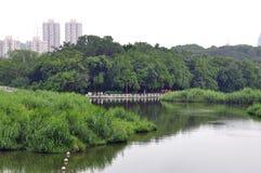 Uferkorridore stockbilder