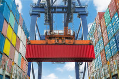 Uferkran hebt Behälter während der Frachtoperation im Hafen an Lizenzfreies Stockbild